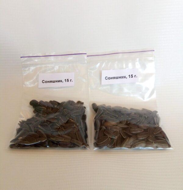 Семена микрозелени Подсолнечник