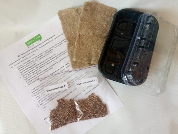 Набор для выращивания микрозелени Кинза (Кориандр)